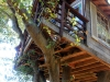 treehouse_10